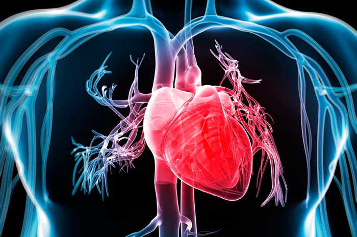 Popular Trends in Cardiologia